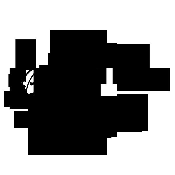 bg logo png