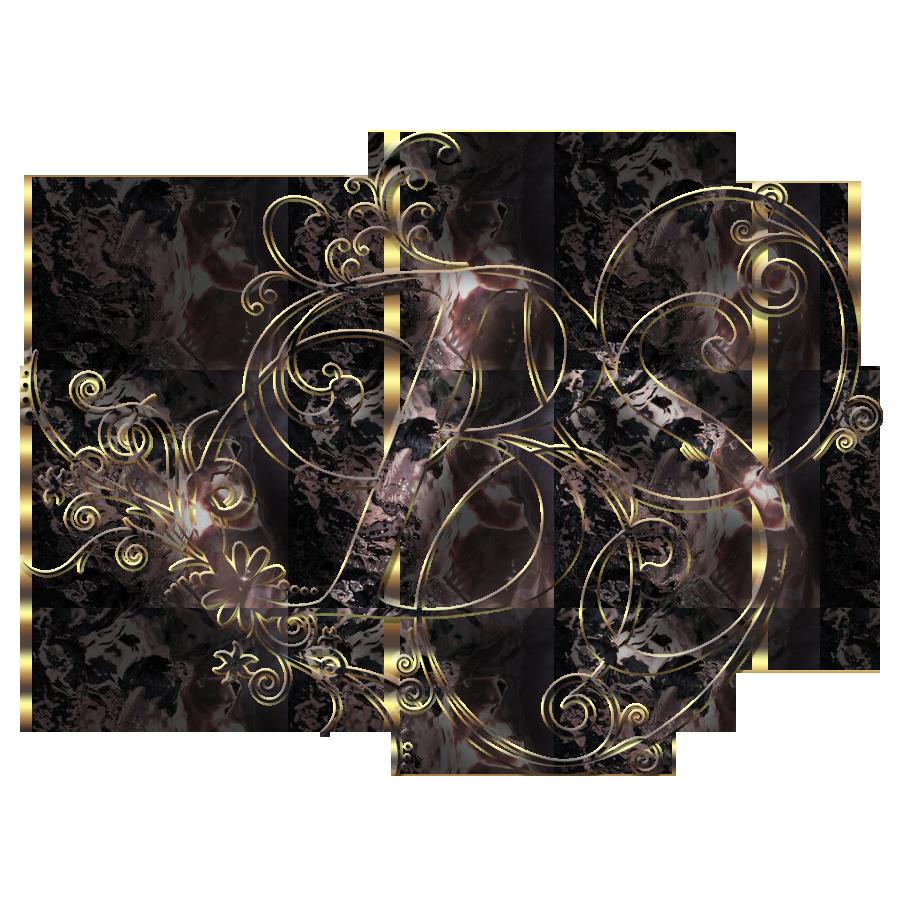 bs logo vector