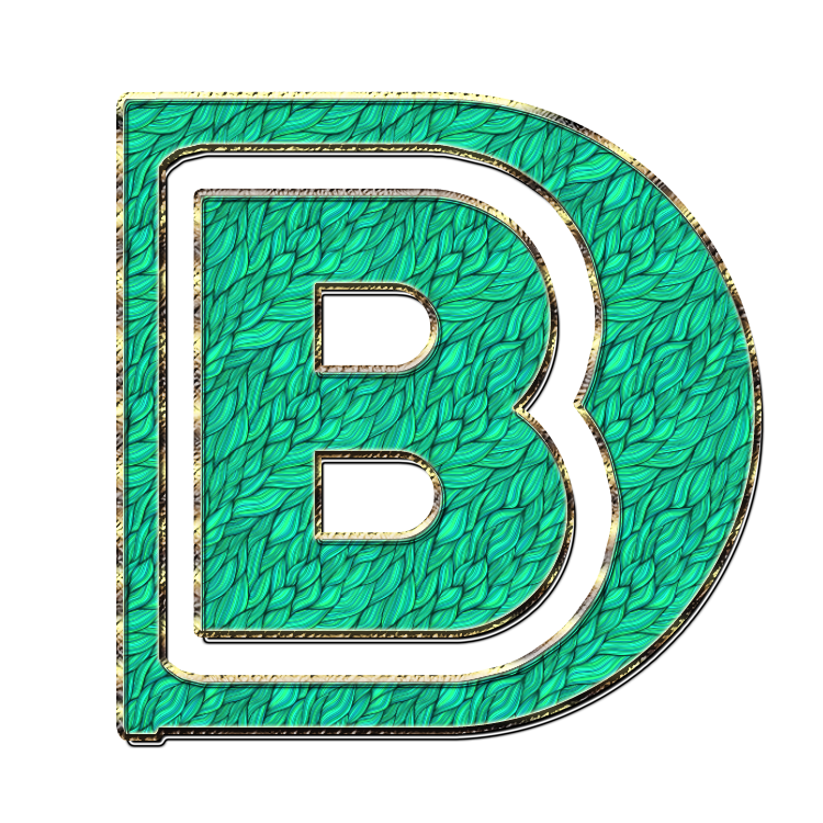 bd letter logo png