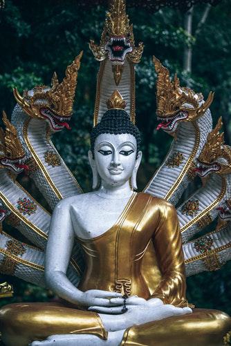 buddha purnima 2019 india