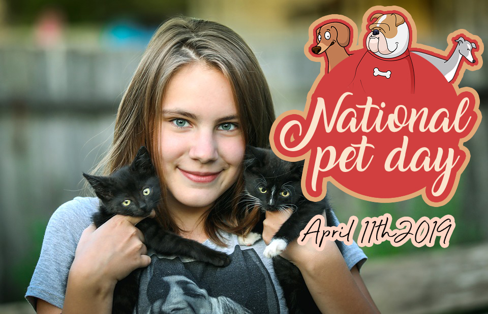 Best National Pet Day images