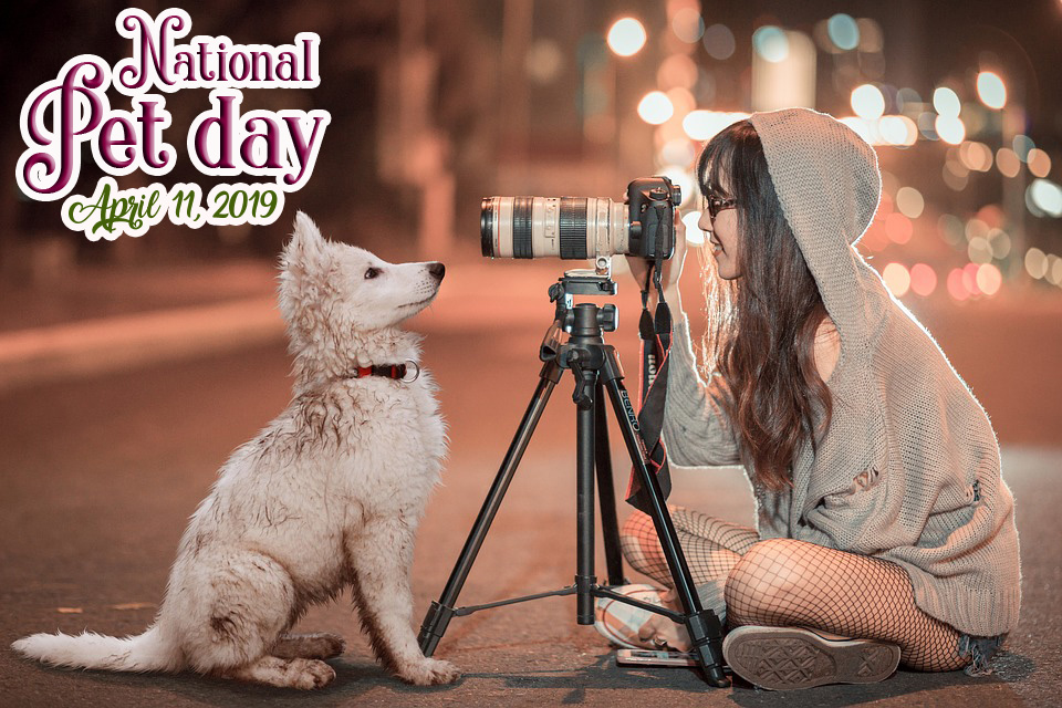 pet day wishes