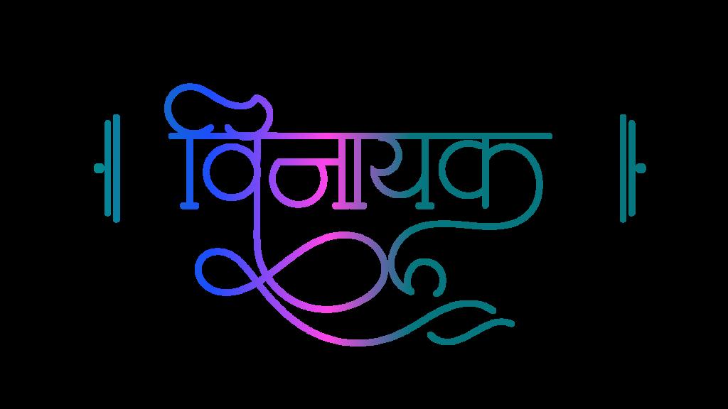vinayak logo image
